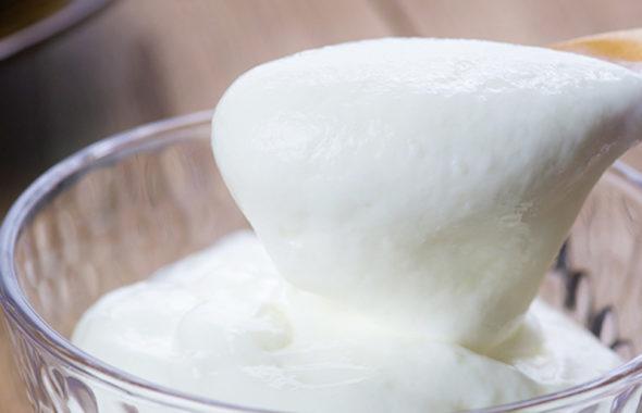 ギリシャヨーグルトならではの独特ななめらかさが楽しめる湯田牛乳のヨーグルト